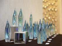 Awards Display 01